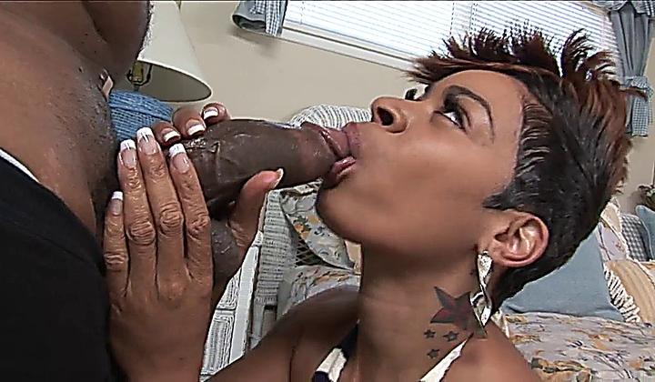 Ebony regina spice