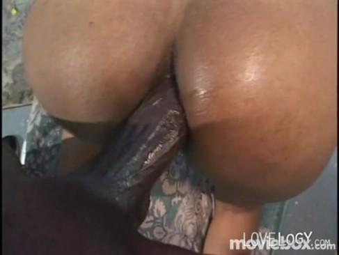 big black cook sex video