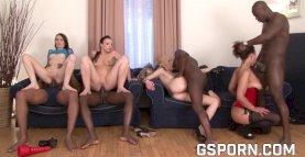 Quatre renards pour un groupe de sexe